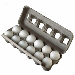 Rare $0.55/2 Dozen Eggs Coupon (Any Brand Fresh Eggs)